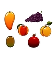 Juicy and sweet isolated fresh fruits set vector image vector image