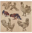 poultry - an hand drawn pack freehand sketching vector image vector image