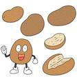 set of potato vector image vector image