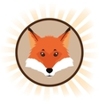 fox cartoon inside circle design vector image