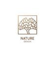 gingo biloba leaf logo square ornamental simple vector image