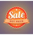 Hot price badge vector image vector image