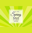 spring sale banner with colorful stripes vector image vector image