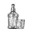 hand drawn whiskey bottle with drinking glass vector image