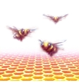 honeycomb background with three bees vector image