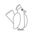 beautiful parrot bird vector image