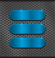 Blue oval plates on metal perforated background