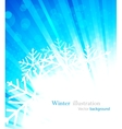 bright winter background vector image