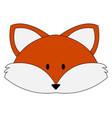 cute red fox on white background vector image