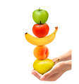 Hands holding group of fresh fruit Dieting concept vector image vector image