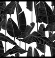 seamless pattern with black line bananas leaves