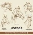 set hand drawing horses 6 vector image vector image
