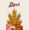 bread fresh bakery wheat donuts pretzel vertical vector image vector image