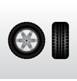 Car tire with wheel vector image vector image