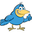 cartoon of a bird giving thumbs up vector image vector image