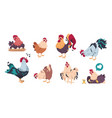 chicken and rooster cute poultry farm characters vector image