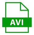 file name extension avi type