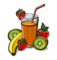 fruits cocktail smoothie vector image