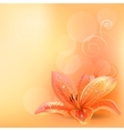 pastel background with orange lily vector image vector image