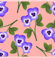 violet pansy flower on pink background vector image vector image