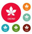chestnut leaf icons circle set vector image vector image