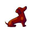 cute cartoon dachshund vector image vector image