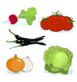 fresh gardening vegetables isolated vector image vector image