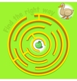 Game labyrinth find a way duck vector image vector image