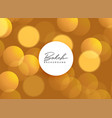 golden beautiful bokeh lights background vector image