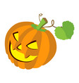 pumpkin with leafs isolated on white backgroun vector image vector image
