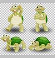 set cute turtle on transparent background vector image
