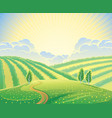summer rural landscape with hills and road vector image vector image