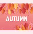 autumn greeting card with beautiful leaves vector image vector image