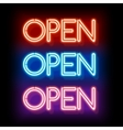 Neon word entry Open vector image