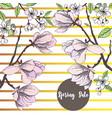spring sakura and magnolia background vector image
