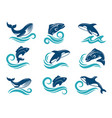 stylized pictures marine animals sharks vector image