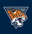 tiger head sport mascot vector image