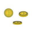 flat bitcoin golden coins set vector image