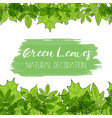 green leaves decoration vector image vector image