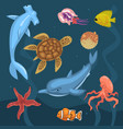 marine life ocean inhabitants sea fauna of vector image