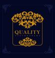 quality frame elegant vintage luxury blue vector image vector image