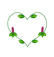 Thai Basil Leaves and Flowers in A Heart Shape vector image vector image