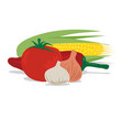 tomato garlic onion corn and pepper vector image