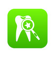 tooth with magnifying glass icon digital green vector image vector image