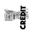what is credit and how is it established text vector image vector image