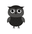 Cute owl bird character Flat design Isolated vector image