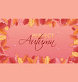 autumn background leaves for web banner card vector image vector image