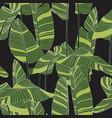 seamless banana leaf pattern background