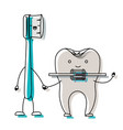 cartoon couple toothbrush and tooth with brace in vector image