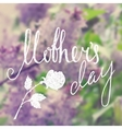 Mothers day handwriting grunge inscription vector image